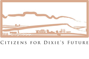 Citizens For Dixie's Future – Booth 17