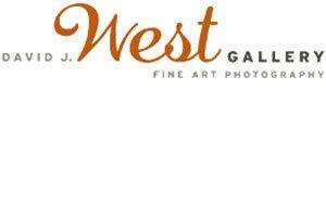 David J West Gallery – Silver Sponsor